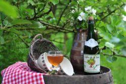 Яблочный сидр напиток Бретани