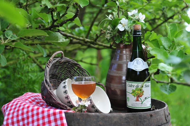 Яблочный сидр — напиток Бретани